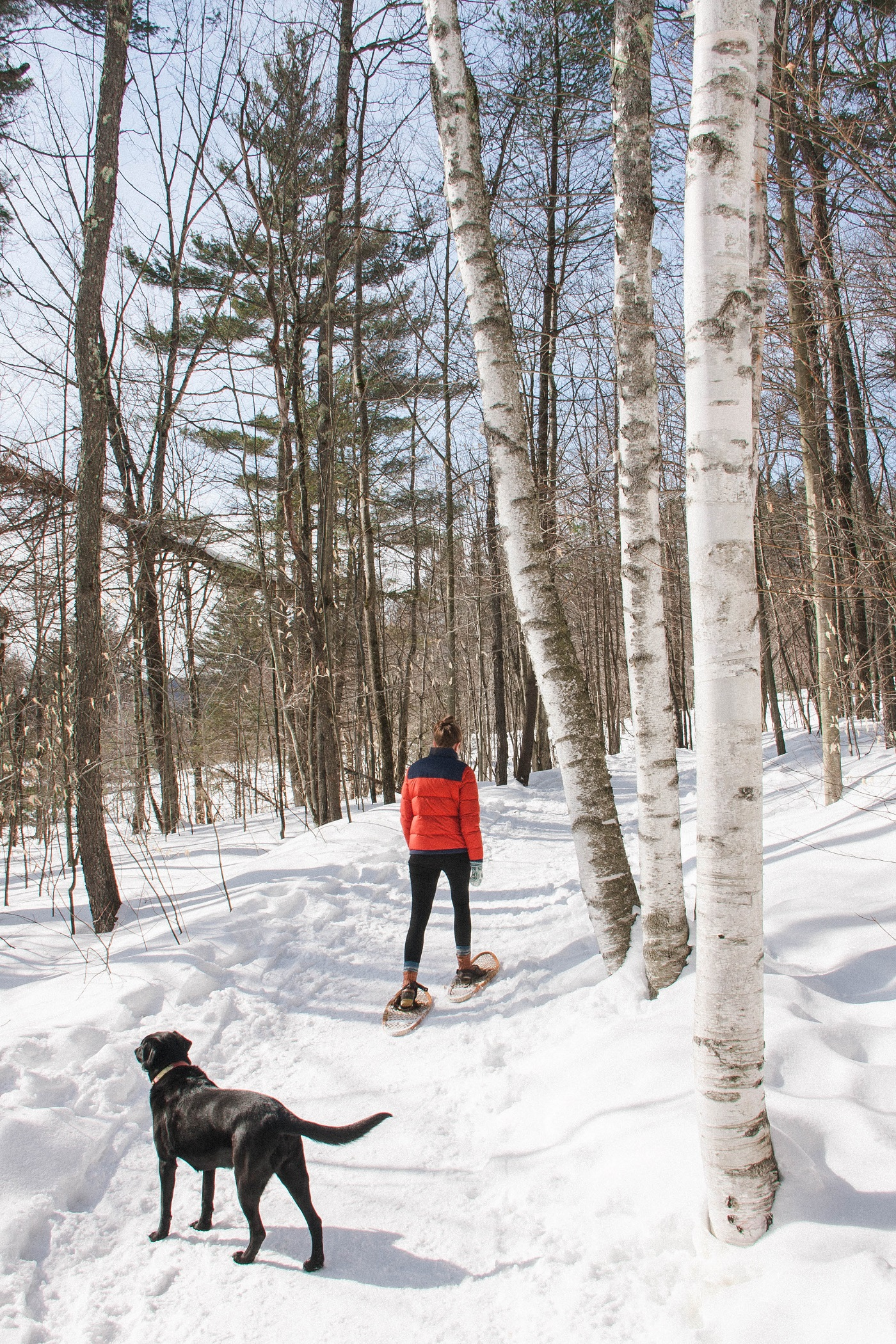 Snowshoeing in Stowe, VT